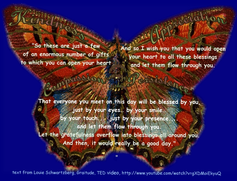 butterfly-kindness