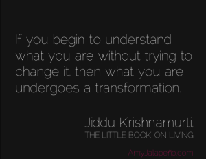 transformatio-change-understanding-amyjalapeno
