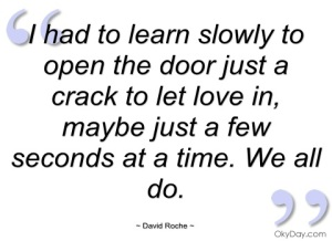 had-to-learn-slowly-to-open-the-door-david-roche