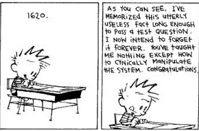teaching something