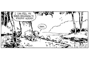 calvin-and-hobbes-quotes-3